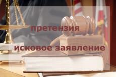 Юридическая консультация по гражданским делам, исковые заявления 8 - kwork.ru