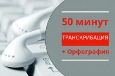 Транскрибация 40 мин, перевод из аудио, видео в текст 23 - kwork.ru