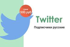 1000 активных Фалловеров в Twitter 9 - kwork.ru