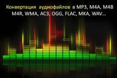 Конвертация форматов аудио файлов в любой другой 17 - kwork.ru