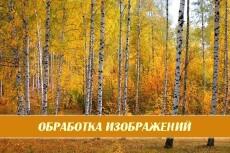 Обработка изображений в фотошопе 89 - kwork.ru