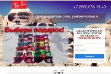 Копия любого landing page с установкой панели управления 16 - kwork.ru