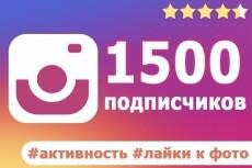3000 Качественных Подписчиков Instagram плюс Лайки 7 - kwork.ru