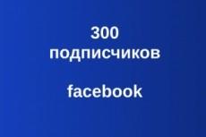 Подписчики в паблик Facebook с фильтрами. Не группа. Гарантия 21 - kwork.ru