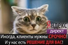 Руководства по созданию поисковой рекламы и РСЯ 16 - kwork.ru