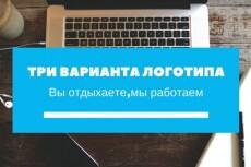 Создам 3 вида логотипа за три дня 17 - kwork.ru