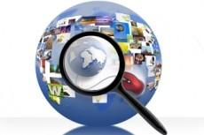 Мониторинг сайтов на наличие требуемой информации 21 - kwork.ru