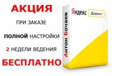 Настрою Яндекс. Директ + метрика и цели в подарок 21 - kwork.ru