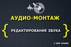 Озвучка текста на трёх языках. Диктор, мужской голос 16 - kwork.ru