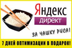 Настройка Яндекс.Директ, РСЯ 8 - kwork.ru