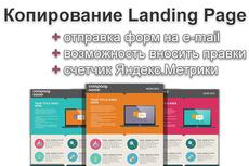 Скопирую и настрою любой лендинг 60 - kwork.ru