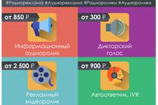 Записываю озвучки, аудиорекламу, аудиокниги и мн.др. Муж. и жен. голоса 42 - kwork.ru