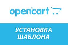 Установка и настройка CMS OpenCart для будущего интернет-магазина 8 - kwork.ru