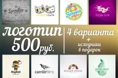 Профессиональный дизайн проект 13 - kwork.ru