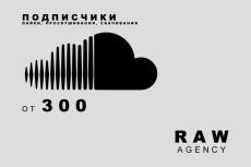 3000 Vine - Подписчики 9 - kwork.ru