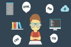 Помощь с Webasyst Shop-Script все версии 27 - kwork.ru