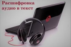 Расшифровка аудио, видио материала в текст. Кратчайшие сроки 14 - kwork.ru