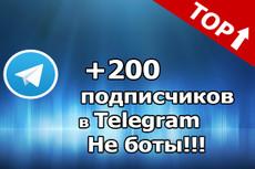 600 подписчиков на канал Телеграм. Живые исполнители 5 - kwork.ru