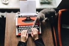 Напишу отличные сценарии для всего 11 - kwork.ru