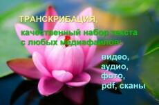 Транскрибация/набор текста 11 - kwork.ru