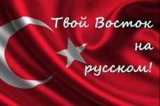 Профессионально переведу с Турецкого и на Турецкий 5 - kwork.ru