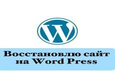Создам форум для Word Press 17 - kwork.ru