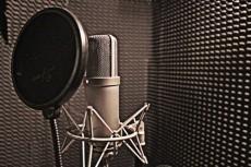 Озвучка рекламного аудио-ролика для радио, торгового центра 2 - kwork.ru
