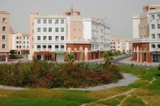 Дам консультацию по недвижимости в ОАЭ 4 - kwork.ru