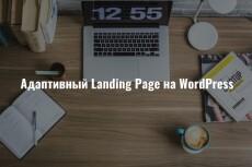 Одностроничный или Landing page на Wordpress 11 - kwork.ru