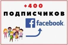 Добавлю 1500 подписчиков на паблик FanPage в Facebook 13 - kwork.ru