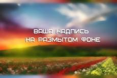 Макет текстовой наклейки на авто и не только 18 - kwork.ru