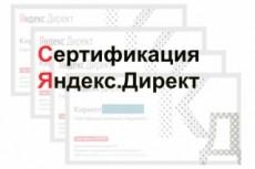 Сертификат Яндекс Директ. Помощь в получении, сдаче экзамена 15 - kwork.ru