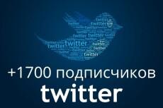 1700 подписчиков на Ваш аккаунт в Twitter 21 - kwork.ru