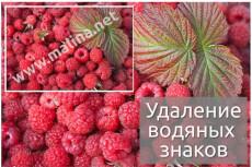 Проставлю водяные знаки (watermark) на 10000 ваших изображений 9 - kwork.ru