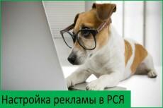 Настрою рекламу в РСЯ 23 - kwork.ru