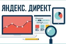 Настройка контекстной рекламы Яндекс Директ поиск+рся 20 - kwork.ru