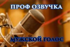 Озвучу ваш текст, мужской голос, 70 слов максимум 3 - kwork.ru