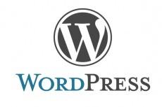 Помогу с сайтом на Wordpress, Diafan CMS 20 - kwork.ru
