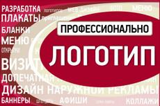 Нарисую профессиональный векторный логотип за один час 27 - kwork.ru
