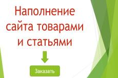Полный анализ вашего сайта 19 - kwork.ru