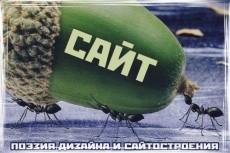 Качественный фотомонтаж или прикольная фотожаба 29 - kwork.ru