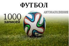 1000 статей Бухгалтерия и Финансы. Автонаполняемый премиум сайт 17 - kwork.ru