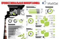 Уникальная инфографика 4 - kwork.ru