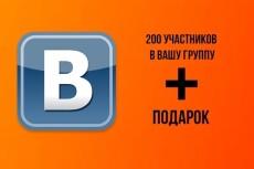 200 участников по критериям в группу Вконтакте 15 - kwork.ru