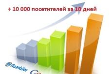 3000 посетителей НА САЙТ ЗА 2 ДНЯ ИЗ поисковиков, ПО ключевым запросам 8 - kwork.ru