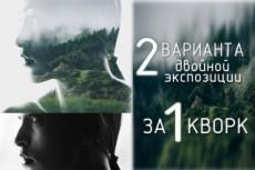 Сделаю двойную экспозицию из вашей фотографии 9 - kwork.ru