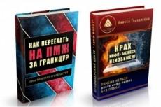 3D-обложка для книги или видеокурса с анимационными персонажами 22 - kwork.ru