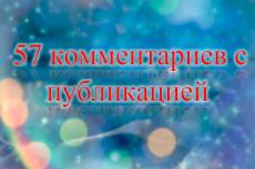 1 комментарий в день в течение 30 дней на Ваш сайт, не в соц. сетях 12 - kwork.ru