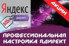 Настройка Яндекс.Директ на 150 ключей + неделя ведения в подарок 8 - kwork.ru