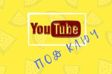 2000 реальных Youtube просмотров с гарантией 57 - kwork.ru